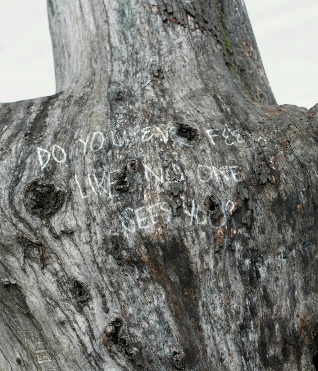 DIVERSIONS RICARDO NAGAOKA